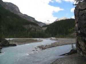 Berg Lake Trail looking towards Whitehorn